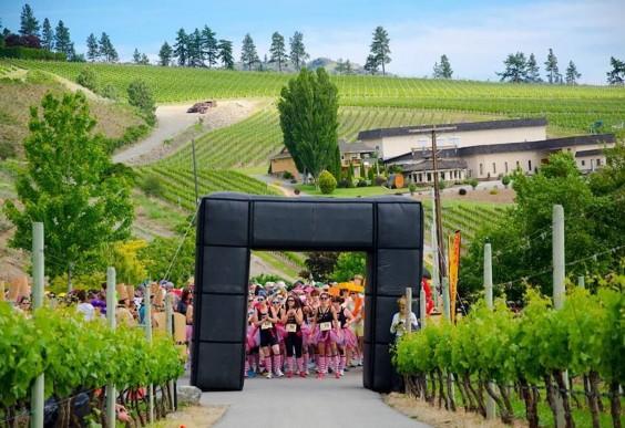 Half Corked Wine Run in British Columbia