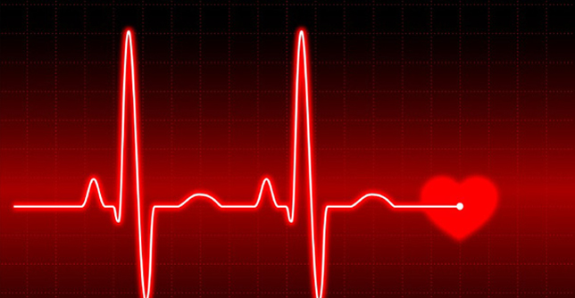 Image result for heart monitor
