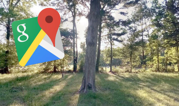 Is Google Maps Hiding a Ghost Island from Us?
