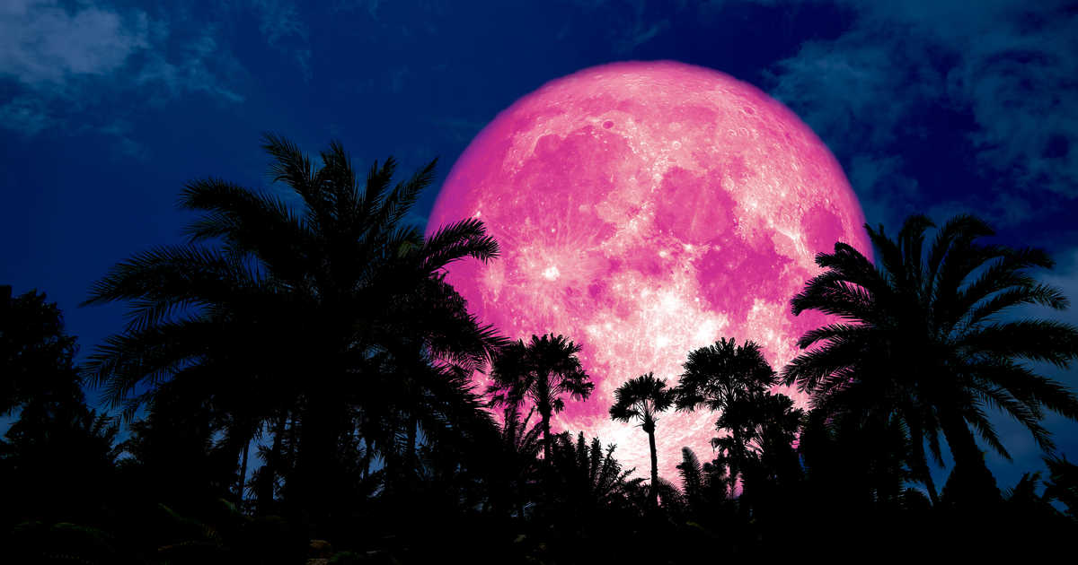 Spring Brings A Full Pink Moon - Here's What You Need To Know