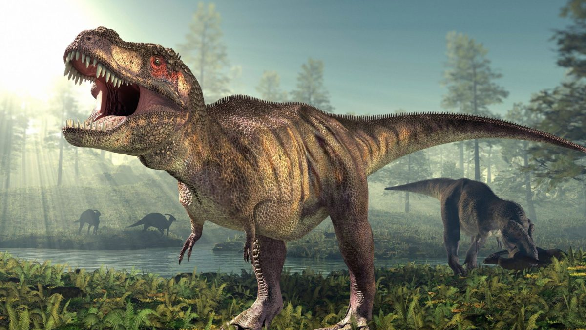 Some Dinosaurs Crawled Before Walking, Just Like Human Babies