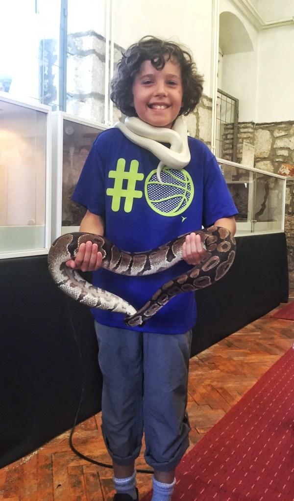 Kasm with Snake Stari Grad Croatis