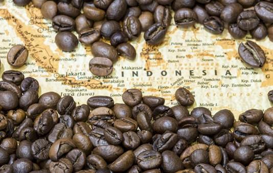 indonesia coffe
