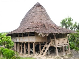rumah adat nias salah satu rumah tahan gempa