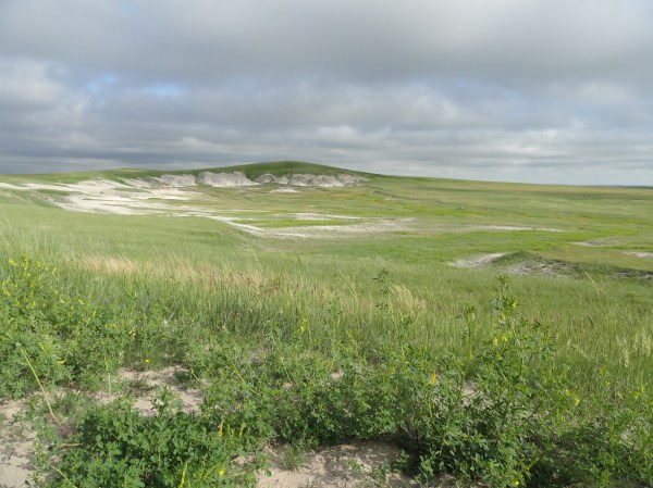 The Grasslands – The Most American Landscape | The Great ...