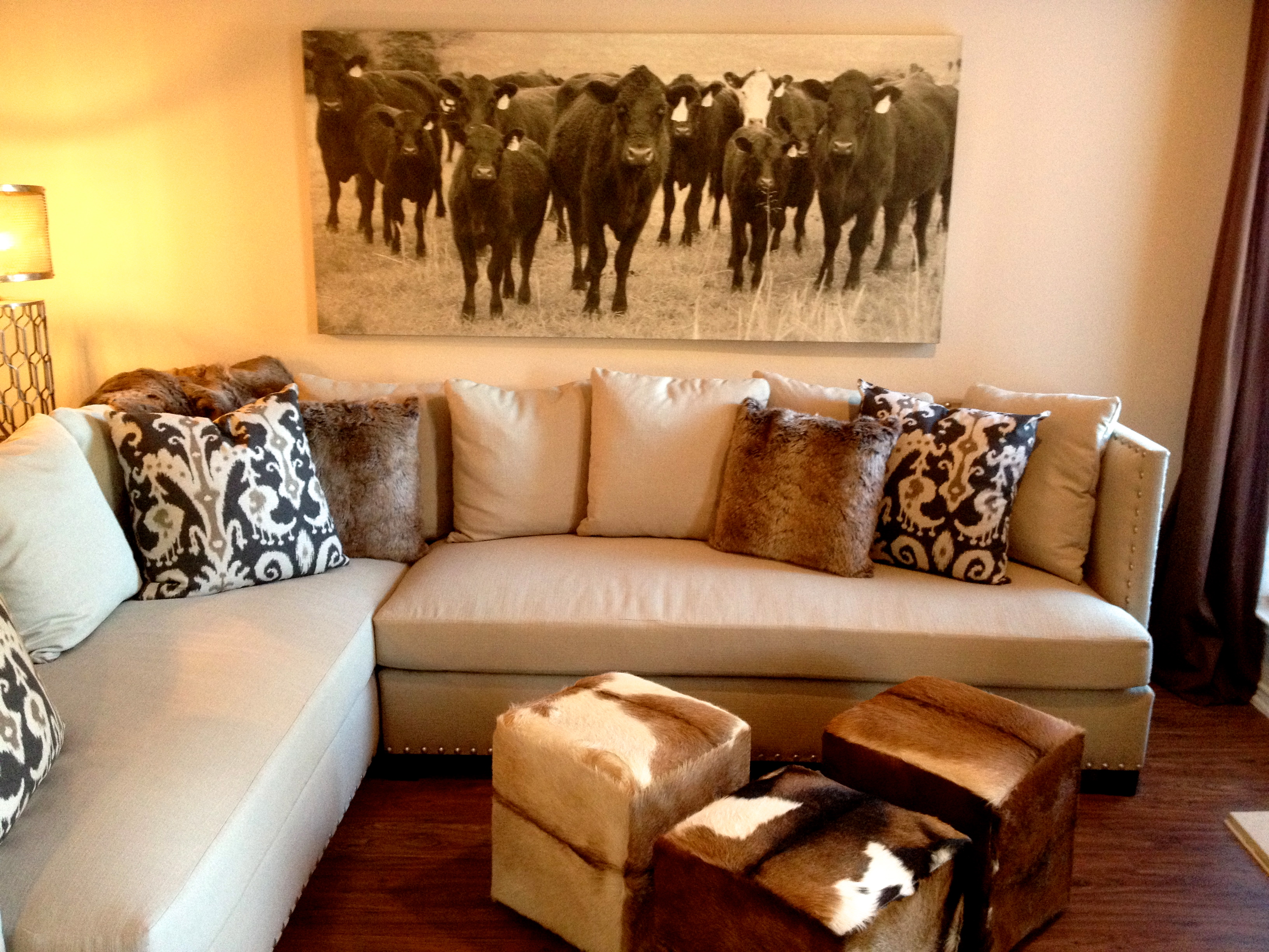 Western-themed-home-decor-decorating-ideas-contemporary