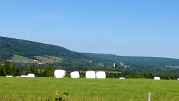 Hills of Mabou