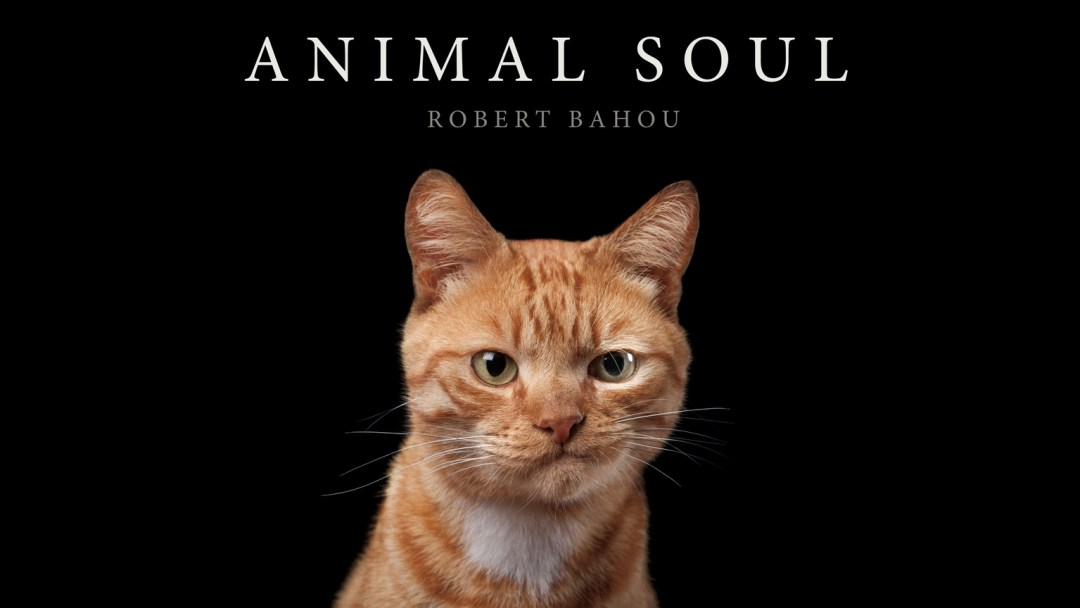 Animal Soul by Robert Bahou