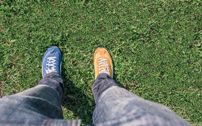 Publisher vs. Producer: what's the difference