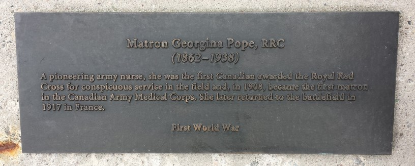 Caption highlights Pope's WW1 contributions