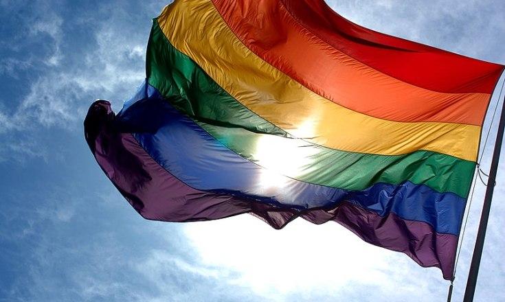 Gay Rhodesian