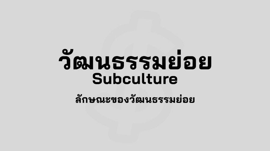 วัฒนธรรมย่อย คือ Subculture คือ ตัวอย่าง วัฒนธรรม