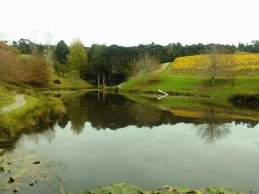 The landscaped grounds of the winery are stunning, even in winter