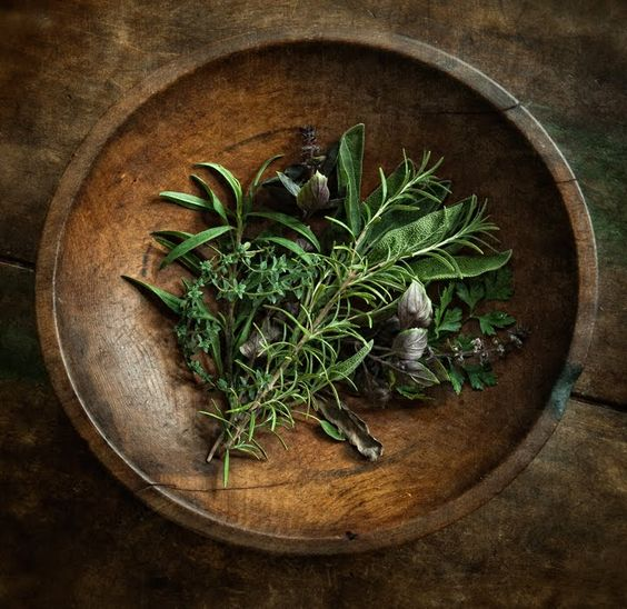 12 Important Aromatic Herbs of Ancient Greece - Benefits and