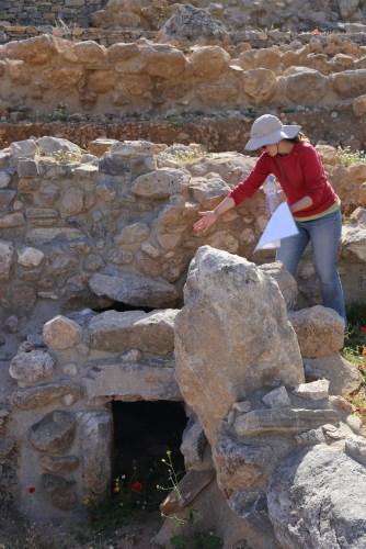 The LMIIIC tholos tomb at Azoria