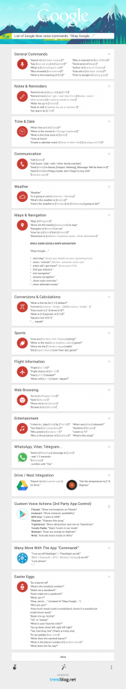 list-google-now-commads-infographic-v6