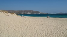 Naxos beach view