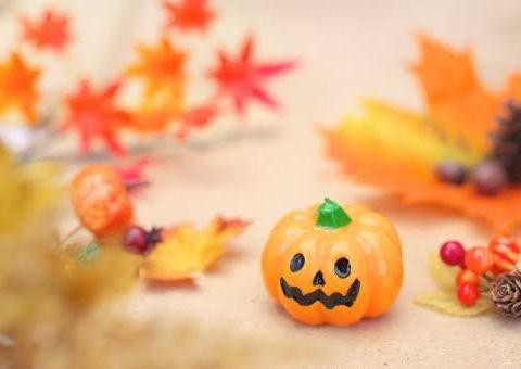 お菓子をくれないとイタズラしちゃうぞ〜!ハロウィンにオススメのお菓子は?