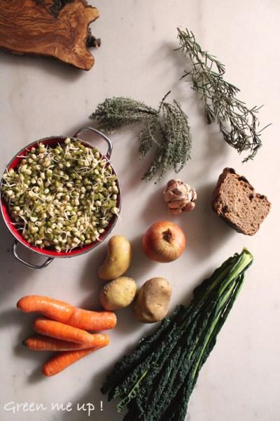 ribollita-miso-graines-germées