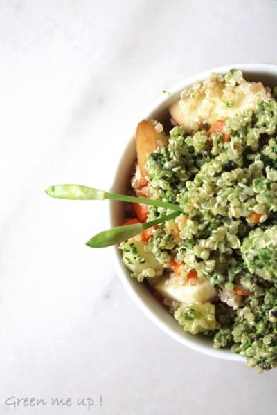 quinoa_pesto_ail_ours_chanvre_2