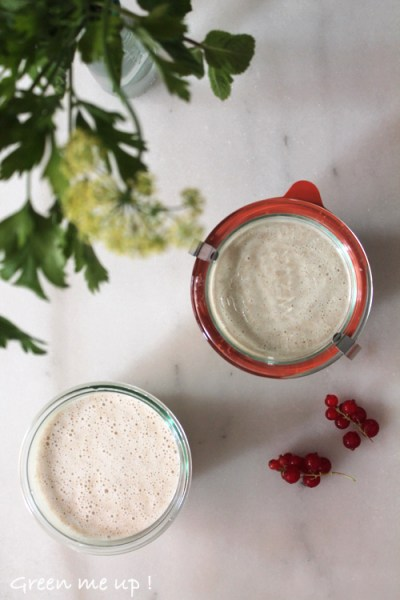 yaourt-avoine2