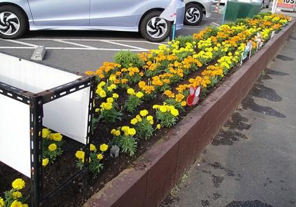 花壇施工事例2