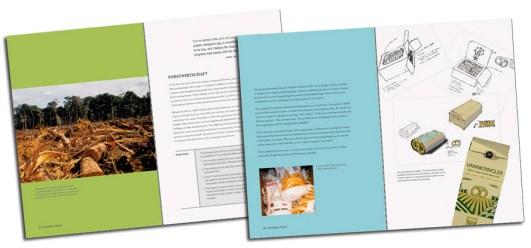 grafikdesign-nachhaltig-aaris-sherin-stiebner-verlag-1