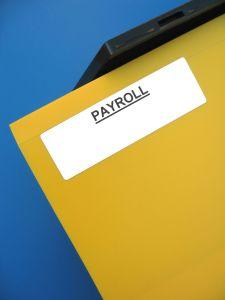 Orange County Payroll 225x300 - Orange County Payroll
