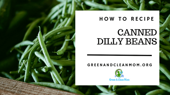 Canning Dilly Beans -How To and Recipe