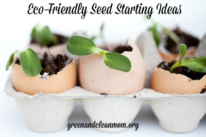 Eco-Friendly Seed Starting Ideas