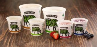 Stonyfield Farms Organic 100% Grassfed Yogurt