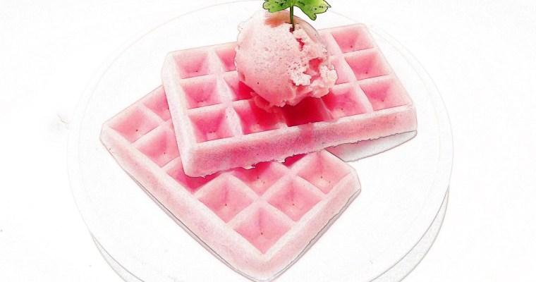 Watermelon vegan ice cream