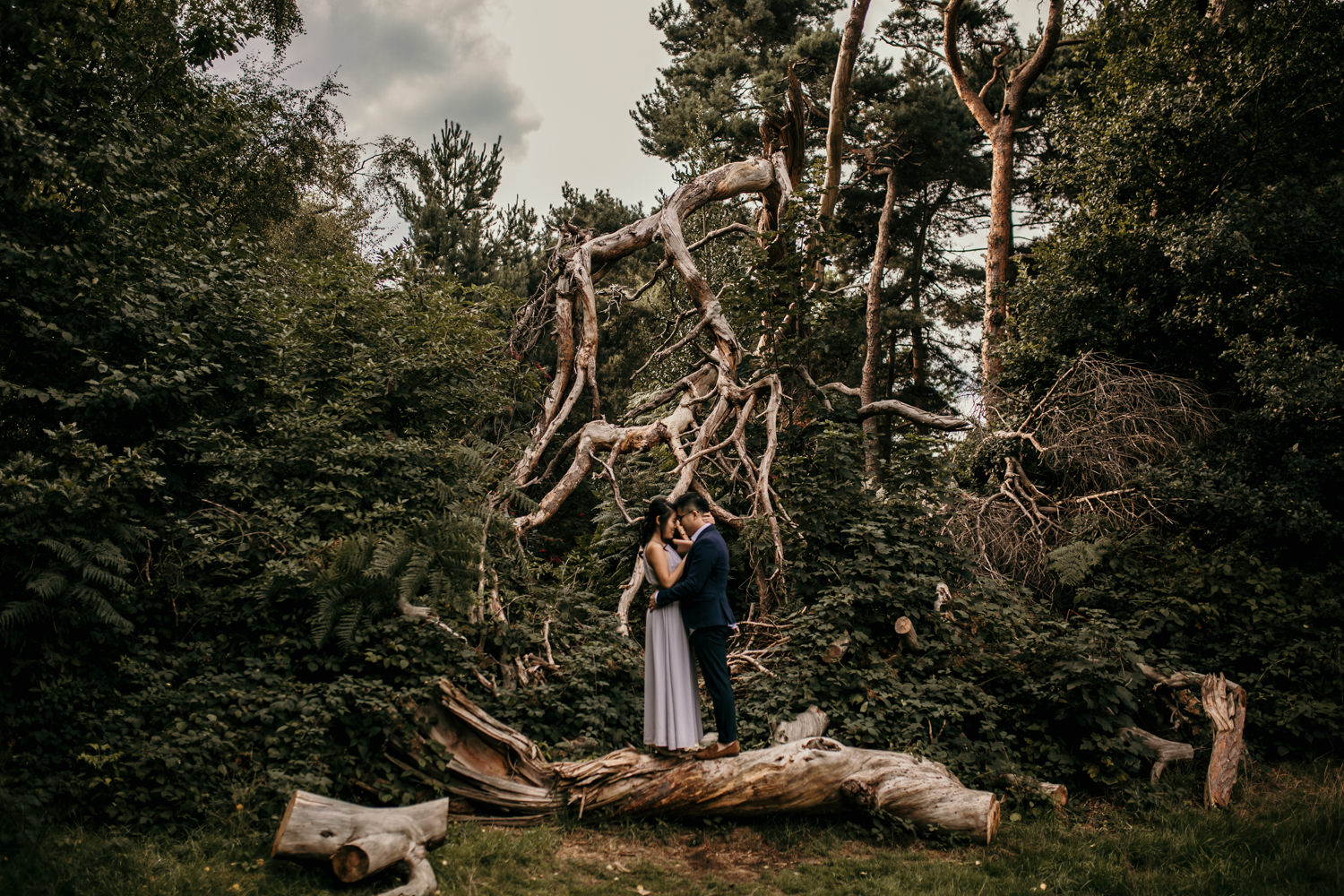 Hampstead Heath engagement photos of couple standing on a fallen tree branch