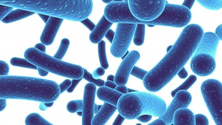 Probiotics:  Gut Health, Your Mouth, & How It's All Connected