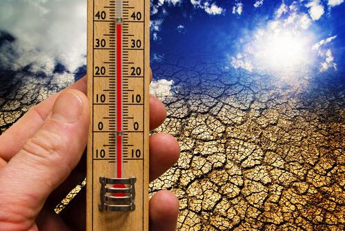 La lutte contre le réchauffement en Afrique nécessite finance et coopération