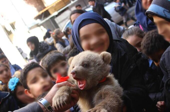 اطفال يلهون بدببة مهددة بالانقراض في مدرسة في الضاحية الجنوبية لبيروت