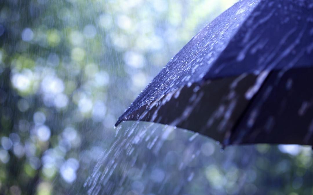 الأمطار الغزيرة من العواصف الفردية الى ازدياد