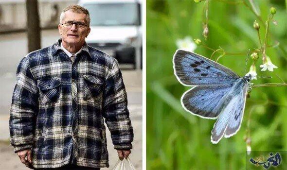 الحكم على قاتل الفراشات البريطاني بالسجن ستة أشهر