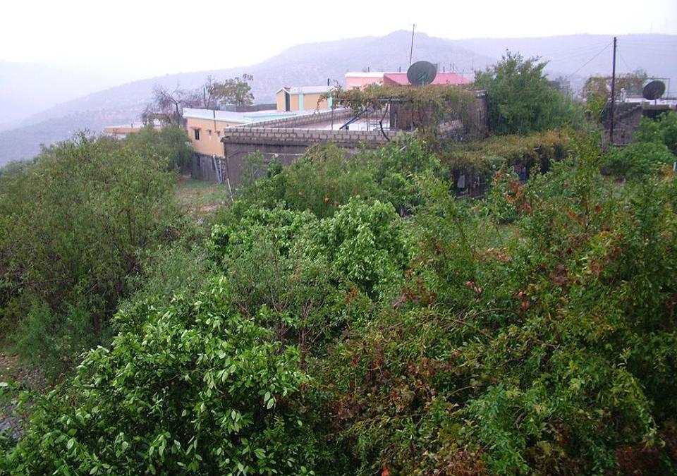 قرية سورية… نموذجاً حياً لحراس الطبيعة
