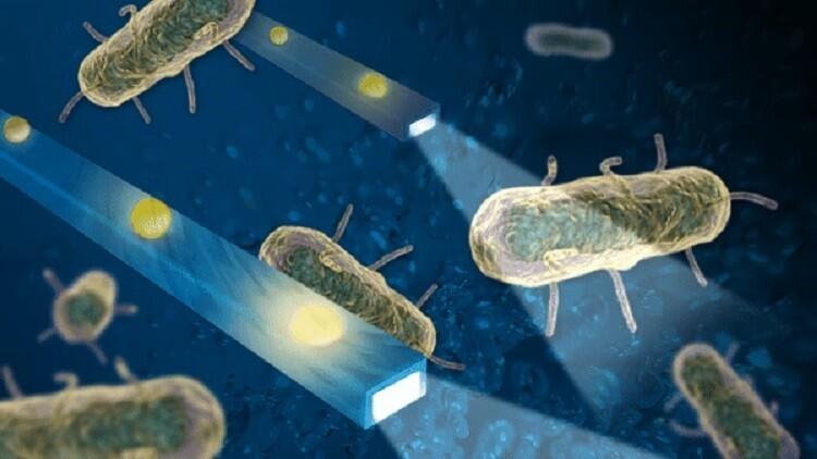 اختراع جديد يرصد حركة البكتيريا داخل الجسم!