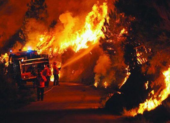 مقتل 62 في حرائق غابات بالبرتغال والحكومة تعلن الحداد