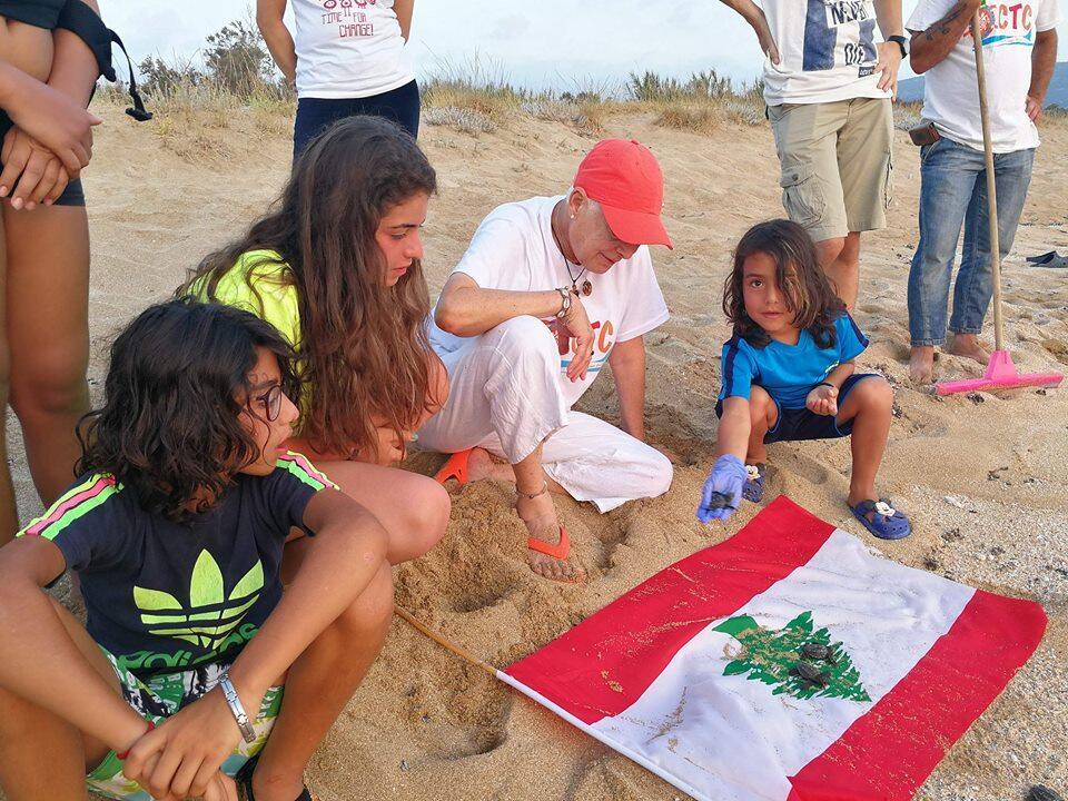 صغار سلاحف المنصوري… هدية لبنان للمتوسط