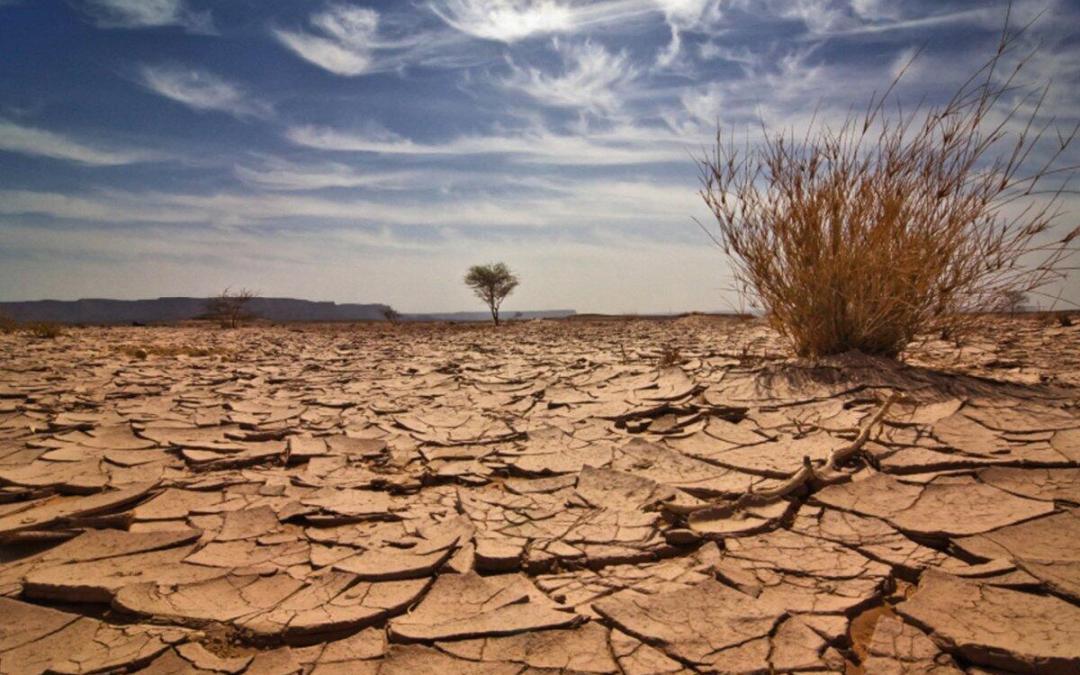 جفاف المنطقة العربية سيستمرّ لـ 10 آلاف عام