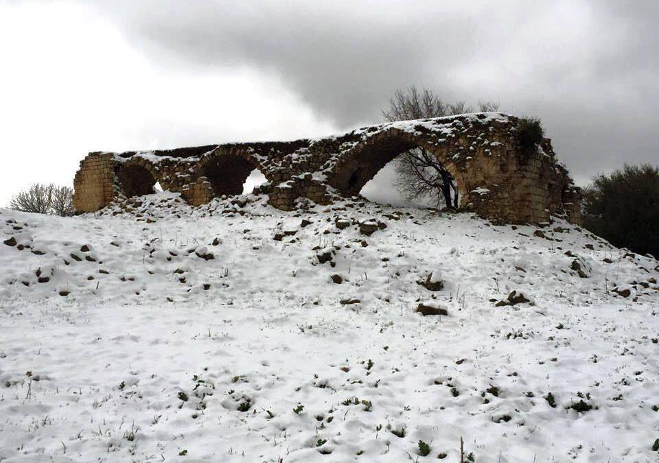 """""""موقع قطمون"""": قرية رومانية مهجورة ومهملة"""