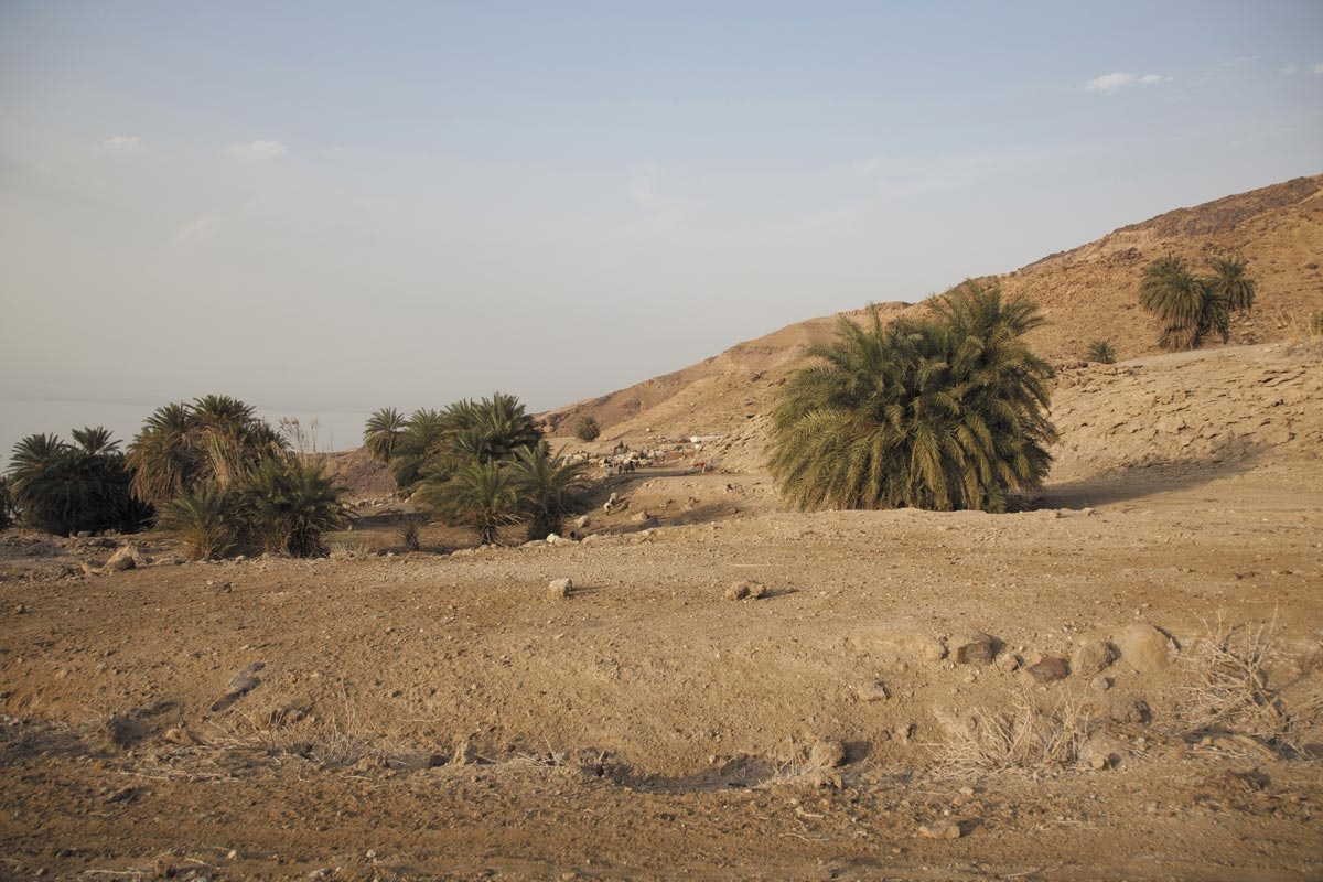 Home and Dry: Middle East water shortages