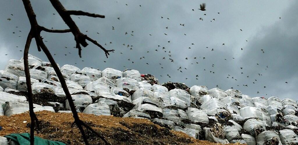هل آن الأوان لتنحية وزارة التنمية الإدارية عن إدارة النفايات الصلبة؟