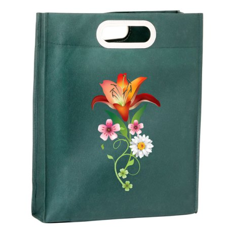 Eco-friendly catalog promotional bag