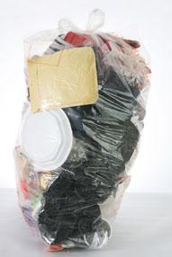 Plastic Bags Environment