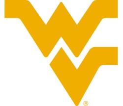 WV Logo Gold White Bakcgound