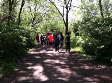 walk-in-the-woods-kingman-island